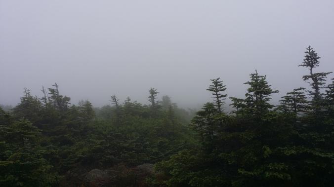 Hiking to Mt. Pierce summit